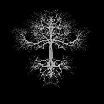 The Tree – Gustaf Broms och Limitations – Nanna Hallberg