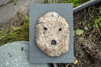 Felens morfologi – Malin Franzén